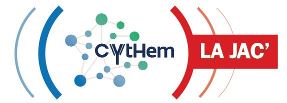cythemFichier 39
